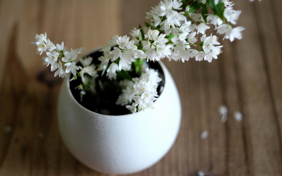 【連載】有田焼の器に花を飾る