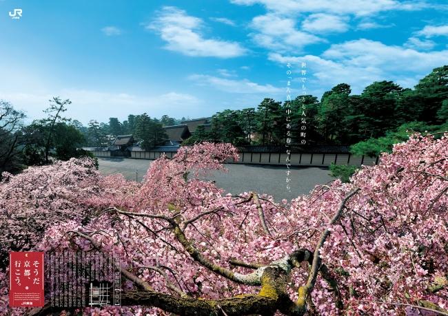 春、桜。「そうだ 京都、行こう。」