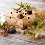 BIOKURA、味と植物性素材にこだわったマクロビオティック プレミアム チョコレートの予約開始!